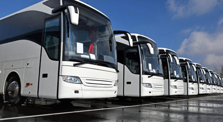 white coach buses in a row