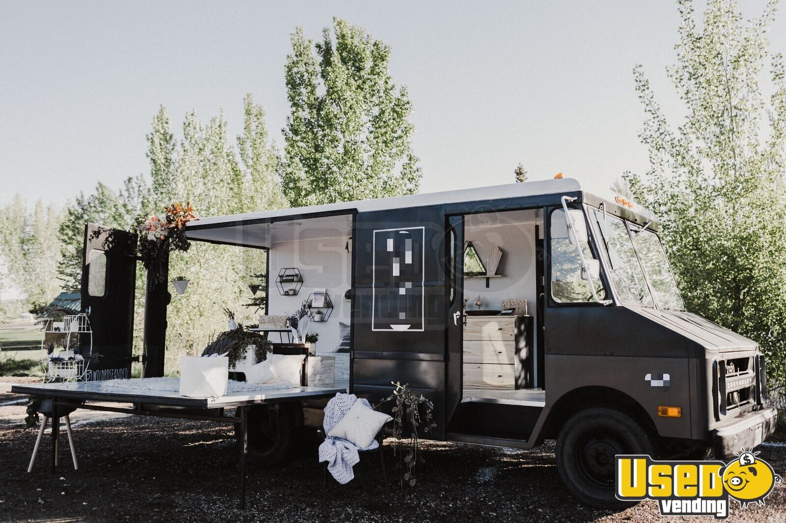 1979 Grumann, Step Van Other Mobile Business Interior Lighting Colorado Gas Engine for Sale - 5