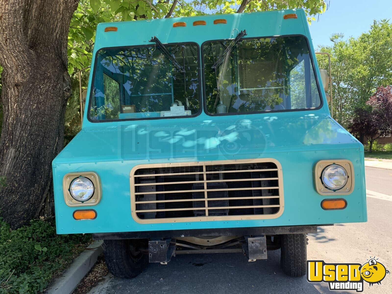 1995 Chevrolet Mobile Boutique Truck Cabinets Nevada Gas Engine for Sale - 4