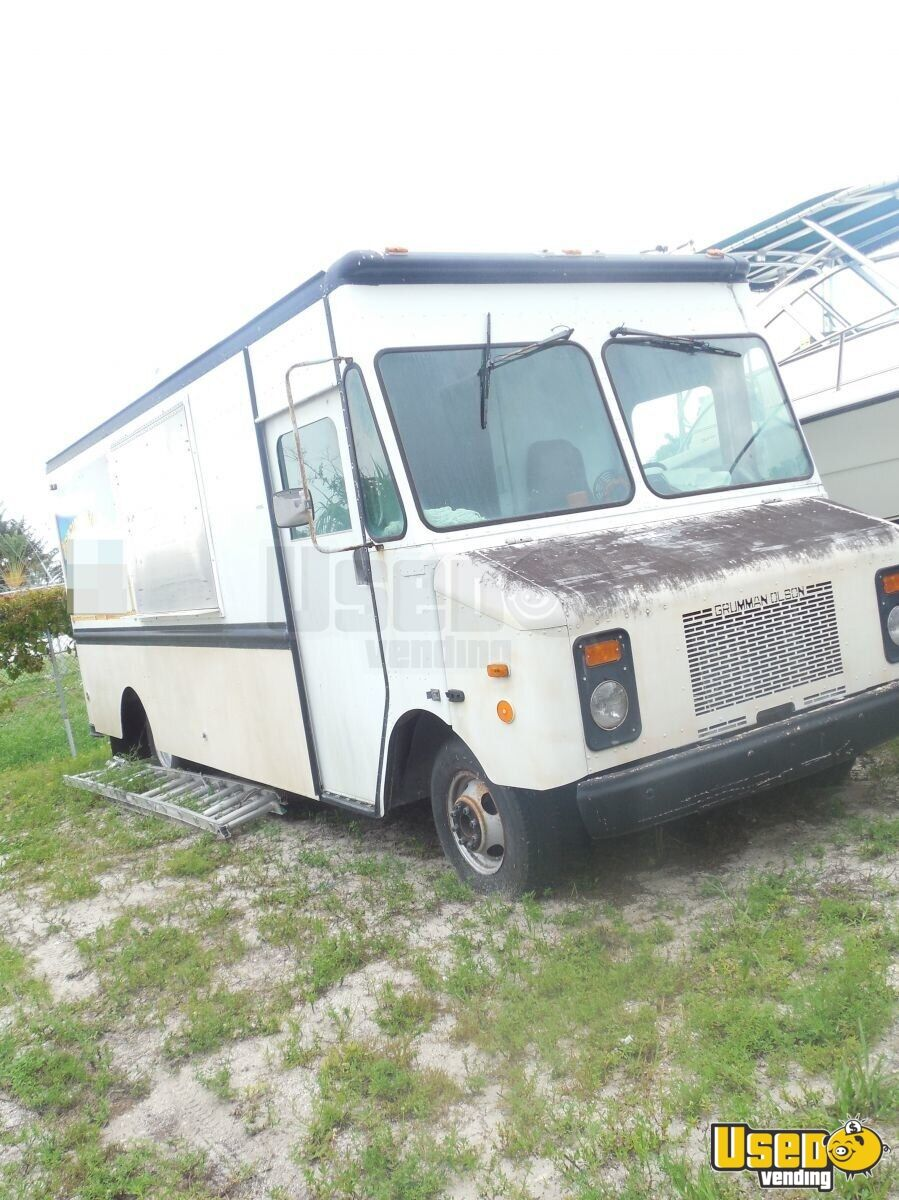 1999 Grumman Olson P30 20' Food Truck Cabinets Florida for Sale - 3