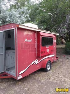 2002 Sno Pro Food All-purpose Food Trailer Cabinets New Mexico for Sale