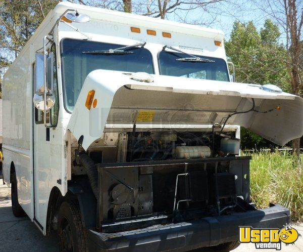 2003 Gruman P42 Workhorse Stepvan Stainless Steel Wall Covers Georgia Diesel Engine for Sale