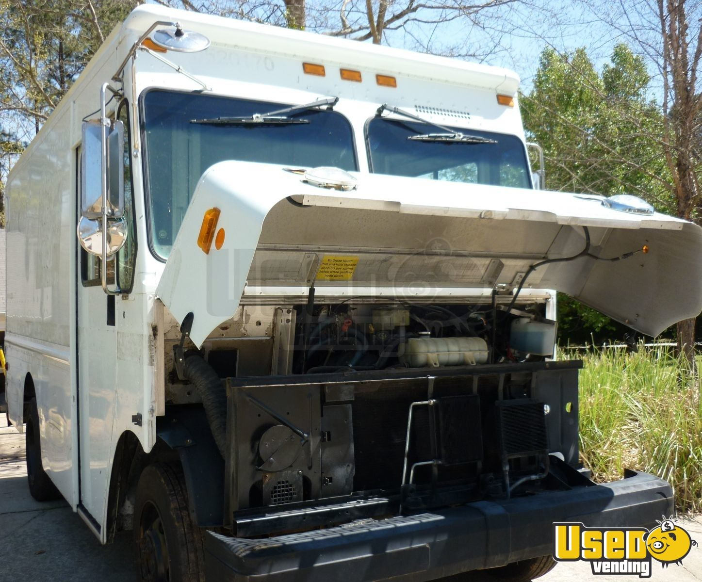 2003 Gruman P42 Workhorse Stepvan Stainless Steel Wall Covers Georgia Diesel Engine for Sale - 3