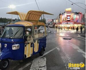 2013 Piaggio Ape Calessino Other Mobile Business Extra Concession Windows Florida Gas Engine for Sale