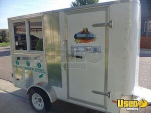 Used 2010 Snowball Stand / Hawaiian Shave Ice Concession Trailer  for Sale in Colorado!
